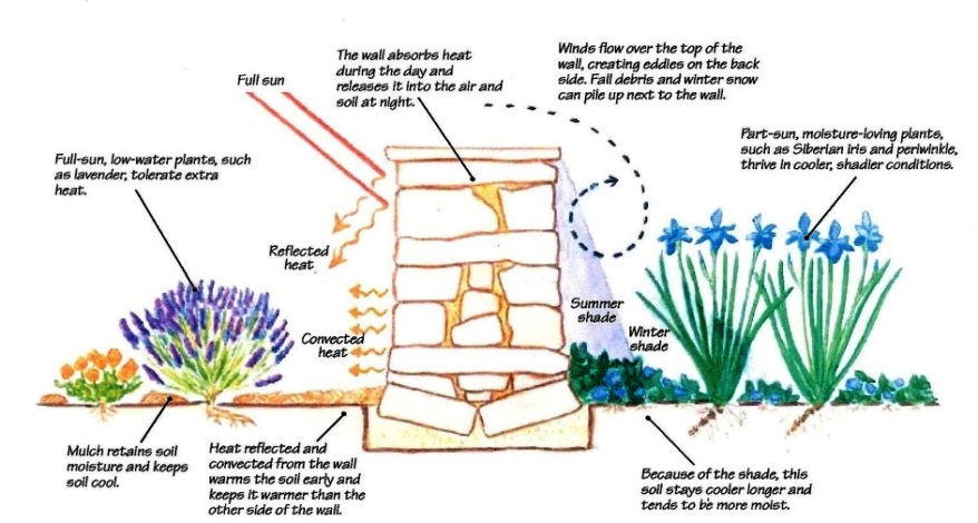 "Observe the ""Micro Environments"" in your Yard"