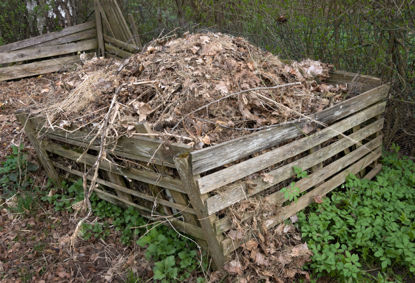 Frequently Asked Questions about Residential Composting During the Covid-19 Pandemic