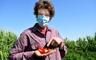 NMSU Extension to host sustainable agriculture webinar series beginning Oct. 1
