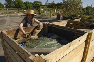 Composting In The Desert is Challenging – Not Impossible!