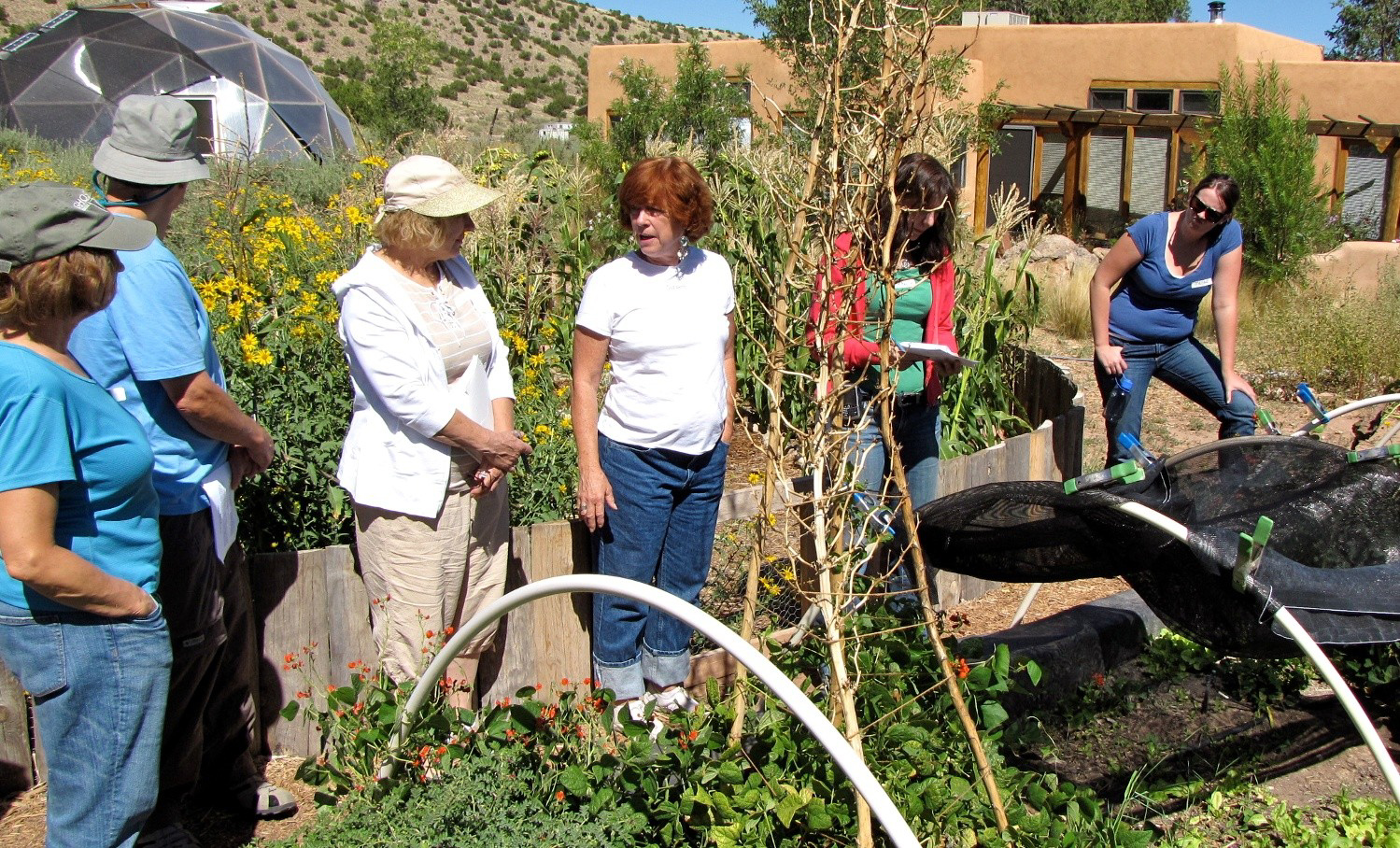 Permaculture and Sustainability