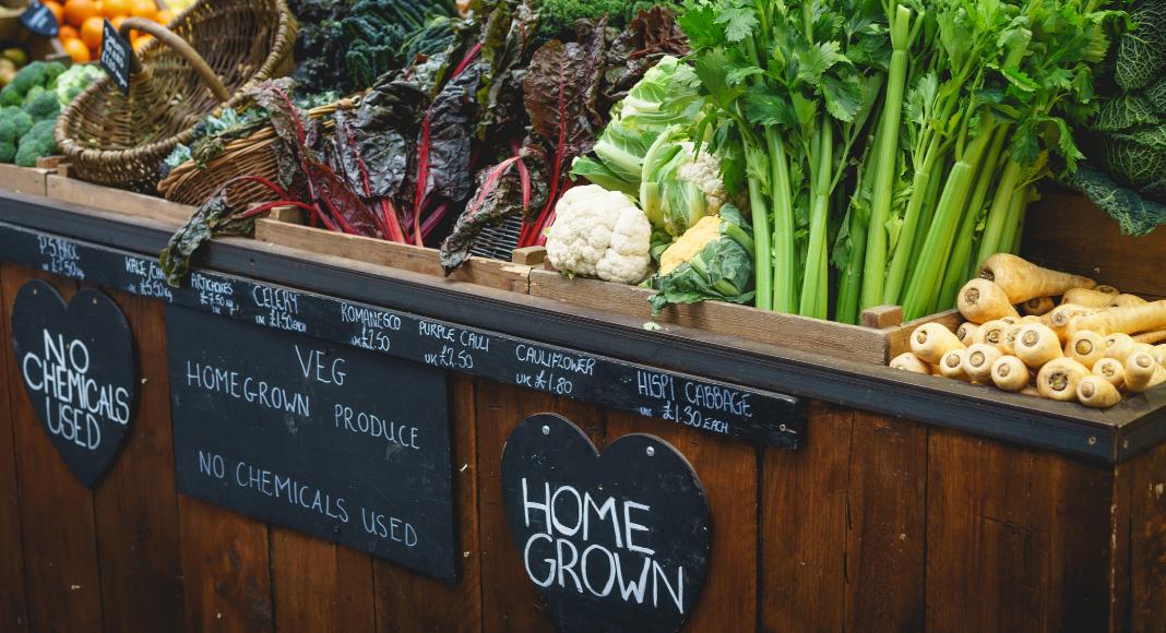 Garden2Table Recipe Corner: No Recipe Recipes