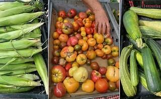 Garden2Table Recipe Corner: Rich Roasted Vegetable Stock